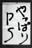 090123sho.JPG