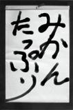 090124sho.JPG
